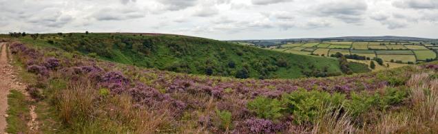 Punchbowl Panorama