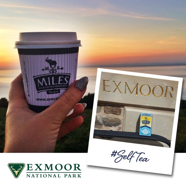 SelfTea-Exmoor-National-Park