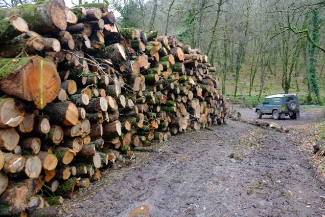 hawkridge-timber-stacks