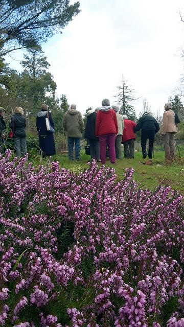 Walking on Exmoor 5 Nettlecombe