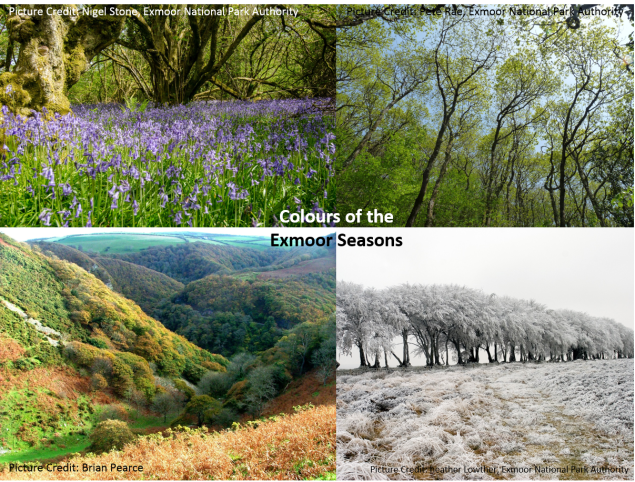 Exmoor_Seasons