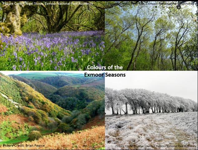 Exmoor_Seasons